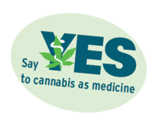 say-yes-MCD